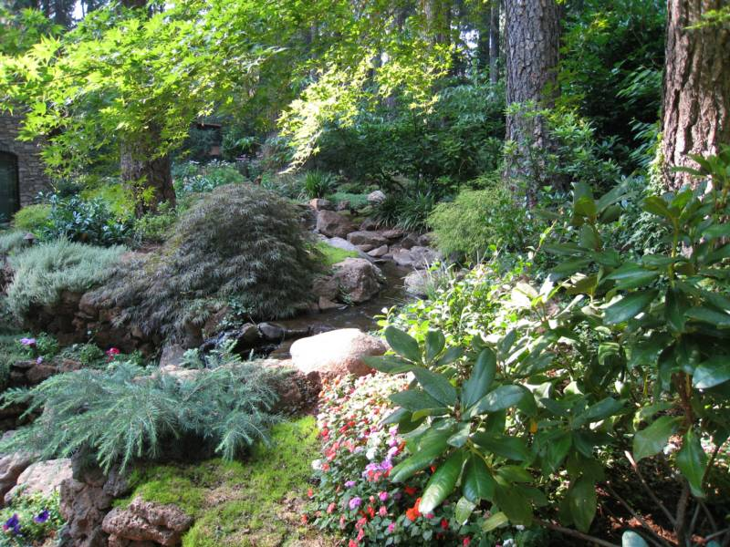 Water Feature in wooded paradise - landscape renovation