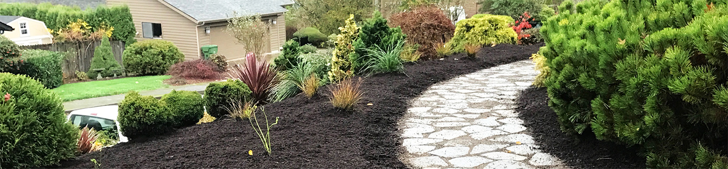 front yard with stone path and fresh mulch - landscape design