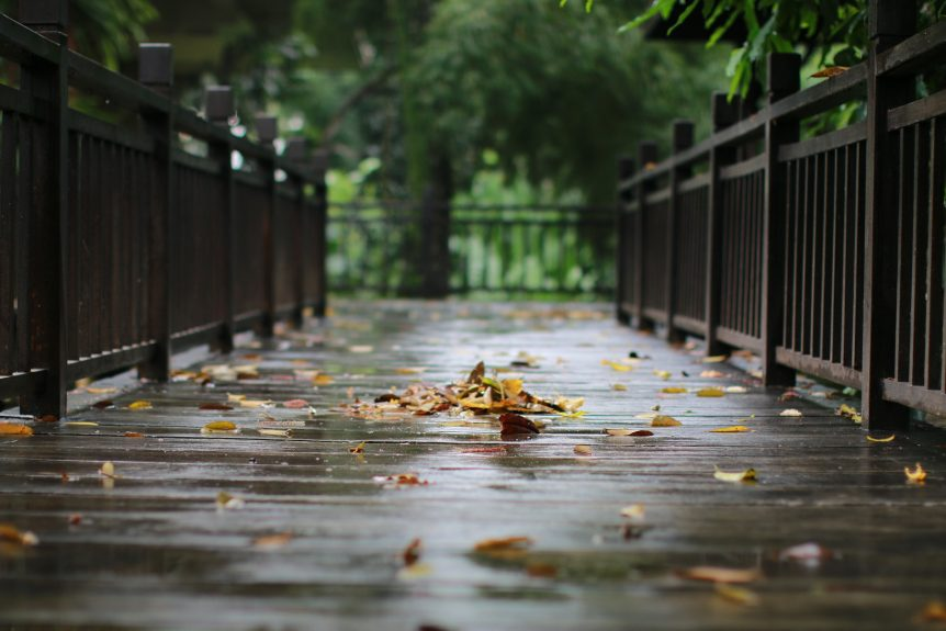 rain on a bridge walkway with fall leaves - landscape drainage is important