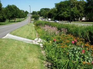rain gardens - avoid landscape erosion