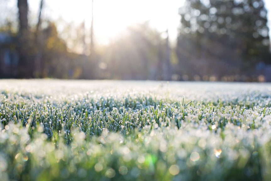 frost on grass with sun shining - Earth Tech Landscape Solutions - winterizing lawns